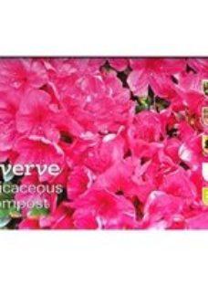Verve Ericaceous Compost 20L