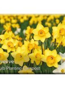 Verve Bulb planting Compost 20L